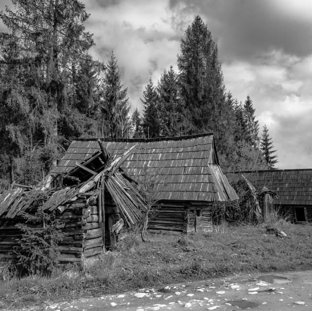 Fot. M. Kuchta 5