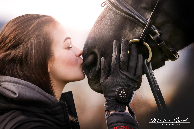 Pferde (28)