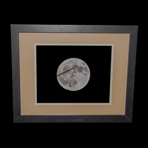 Midnight Flight 8x10 framed print