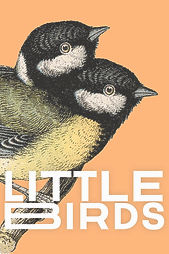 Chameleon by G.C. McKay is the short story to be featured in Filthy Loot's anthology, Little Birds