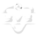 rlo_3v3_logo_white.png