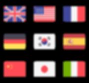 206589-international-flags.png