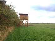 Fugletårn Enghave_Hvedshøj (2)_red.jpg
