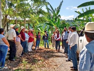 Respuesta inmediata de SDR alienta a agroproductores de Hueytamalco afectados por temporal