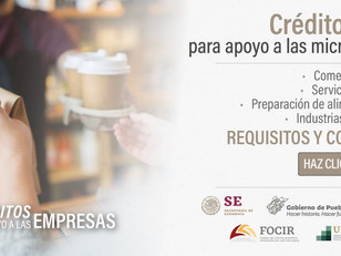 Secretaría de Economía amplía programa de créditos para la reactivación económica