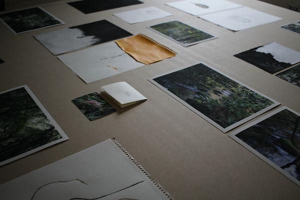 Exposição Casa Comum - Foto: Juliana Pal