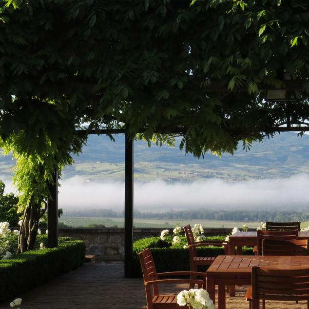 Tuscan Vineyard (9).jpg
