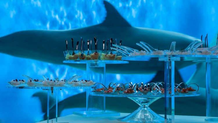 Marry in an aquarium (4).jpg