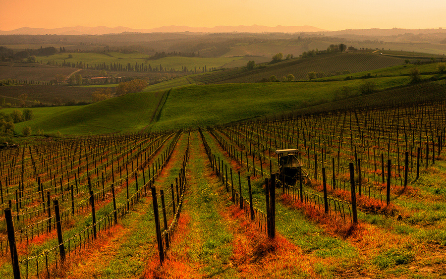 Chianti Wine Full Day Tour