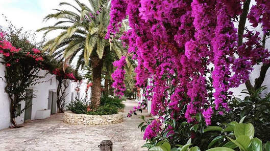 Masseria Apulia (2).jpg