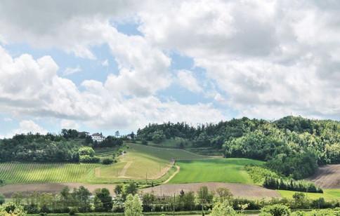 Calling Monferrato (Piedmont)