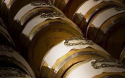Tasting Menus & Wine Pairing Tuscany