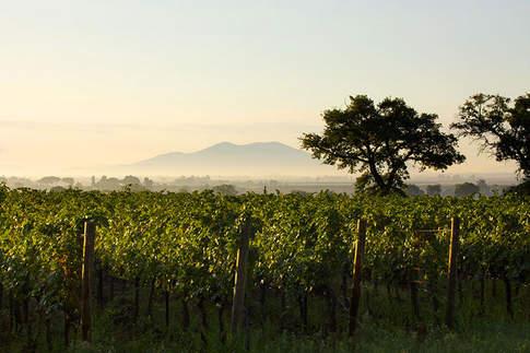 Tuscany (13).jpg