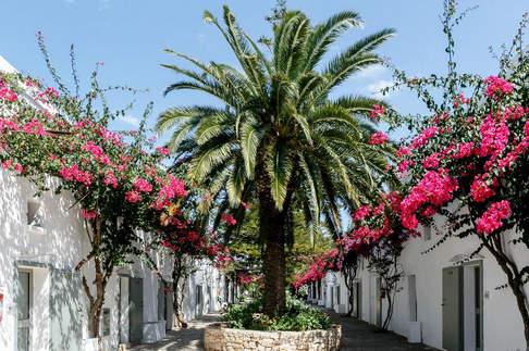 Masseria Apulia (12).jpg