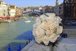 Venice Town Hall Wedding