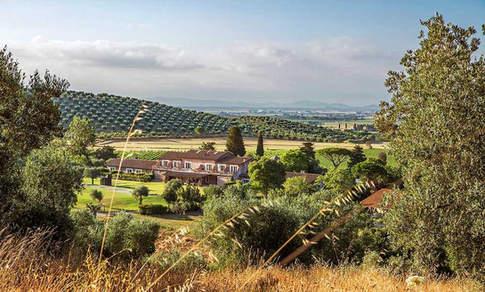 a luxury resort in Tuscany.jpg