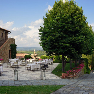 Tuscan Vineyard (10).jpg