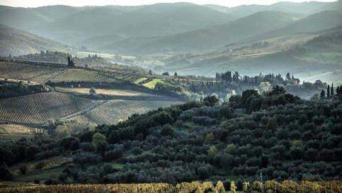 Greve In Chianti Villa (12).jpg