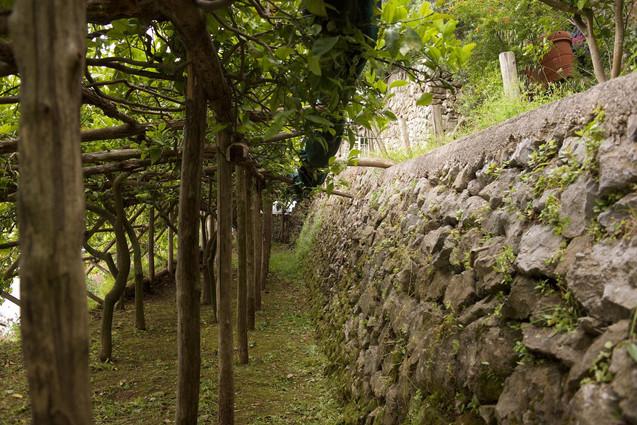 luxury villa amalfi coast (26).jpg
