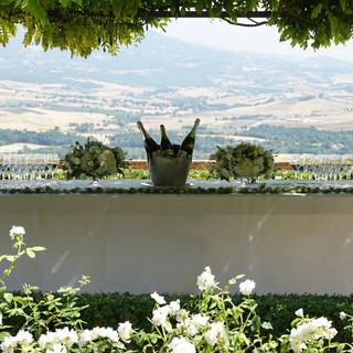 Tuscan Vineyard (7).jpg