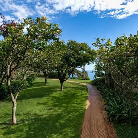 Portofino Luxury Villa (11).jpg