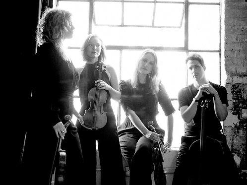 6th February 2022 - Albion String Quartet