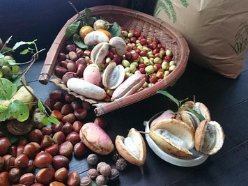 「秋の収穫祭@IL cielo」