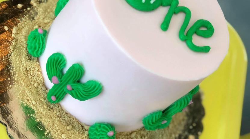 """4"""" light pink CACTI cake"""