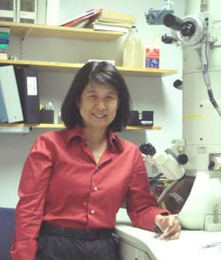 Professor Chiye Aoki