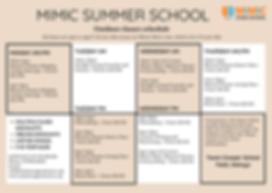 MIMIC SUMMER SCHOOL.png