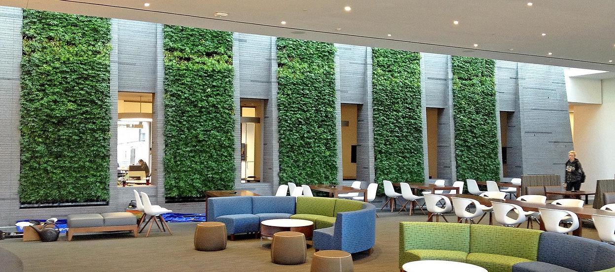 Interior Leaf Institutional Landscape Ideas