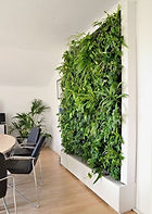 Inteior Leaf Vertical Gardens