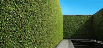 download.jpegInterior Leaf Vertical Garden Ideas
