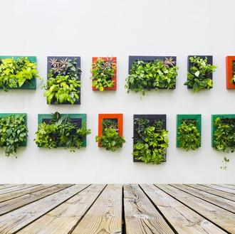 Interior Leaf Vertical Garden Ideas