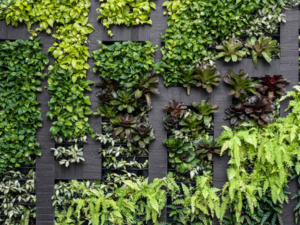 vertical-garden_2000x1500.jpgInterior Leaf Vertical Garden Ideas