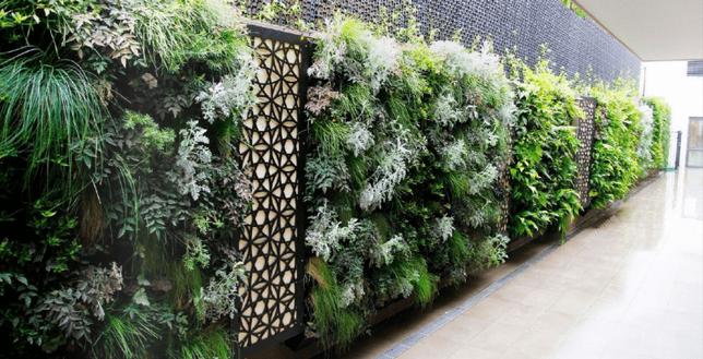 Cheltenham-768x392.webpInterior Leaf Vertical Garden Ideas