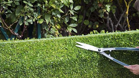 garden-maintenance-e1537548069918.jpg