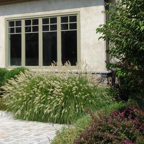 Fountain grasshome-design.jpg