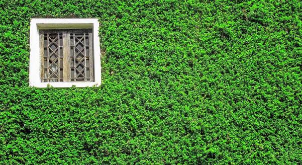 greenfacade-banner.jpgInterior Leaf Vertical Garden Ideas