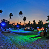 beach party1.jpg