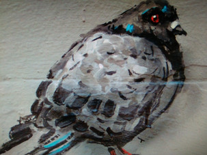 Bowling for Columbidae: Reducing BCN's Pigeon Population