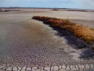 The Desertification of Spain's Drylands