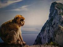 Gibraltar: Banter or Belligerence?