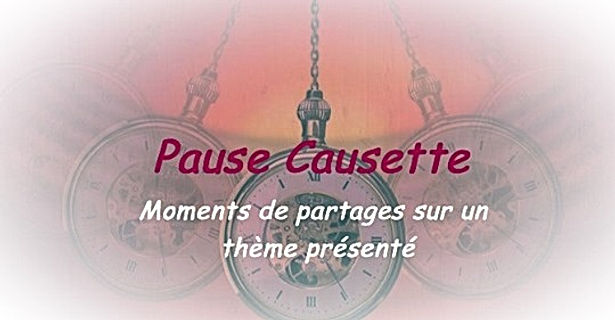 pauses causettes.jpg