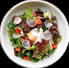 Lyonnaise-Salad.png