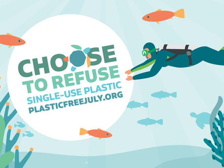 Why Plastic Free July is More Than a Hashtag