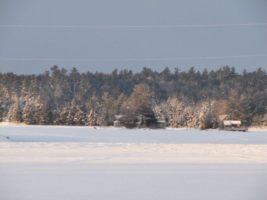 gallery 1 - winter snow