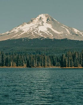 Oregon-Forest-US_edited_edited.jpg