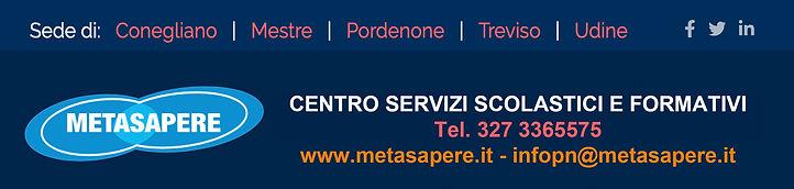 Metasapere banner.jpg