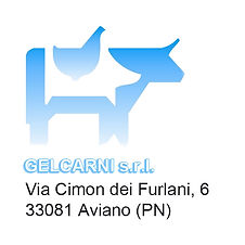 Gelcarni Sponsor copia.jpg